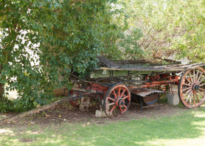 Ox Wagen at Oue Werf Country House Oudtshoorn